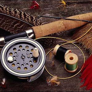 Охотничьи и рыболовные магазины Ардона